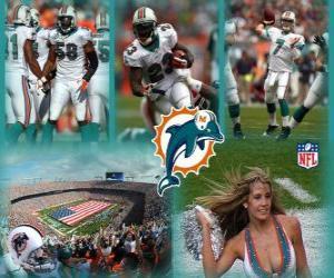 Puzle Miami Dolphins