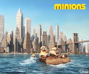 Puzle Minions vim para Nova York