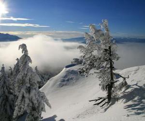 Puzle montanhas nevadas Poiana Brasov, Roménia