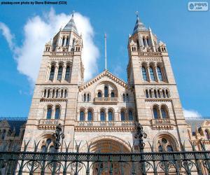 Puzle Museu de História Natural, Londres