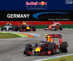 Puzle M.Verstappen GP da Alemanha 2016