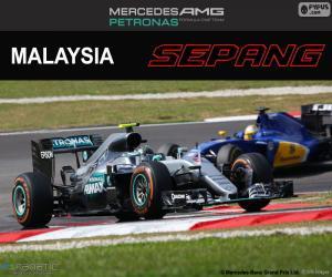 Puzle N. Rosberg, GP da Malásia de 2016
