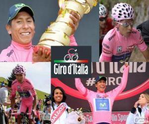 Puzle Nairo Quintana, Giro 2014