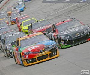 Puzle NASCAR Sprint Cup Series
