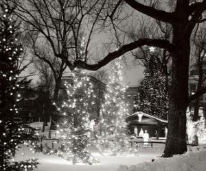 Puzle Natal no Parque