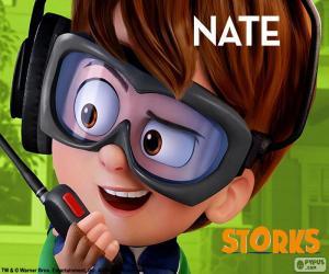 Puzle Nate, Cegonhas