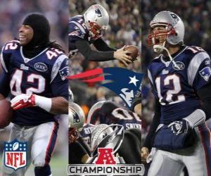 Puzle New England Patriots campeão AFC 2011