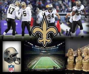 Puzle New Orleans Saints