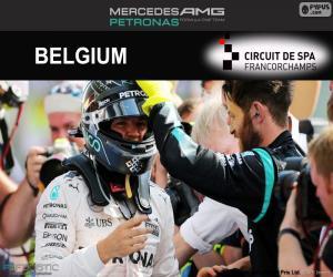 Puzle Nico Rosberg, GP da Bélgica 2016