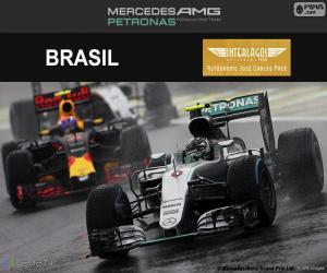 Puzle Nico Rosberg, GP do Brasil 2016