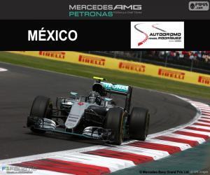 Puzle Nico Rosberg, GP México 2016