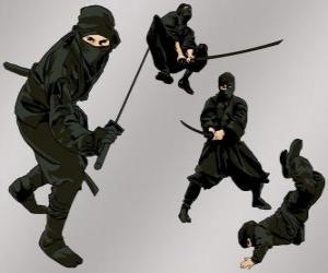Puzle Ninja em várias posições