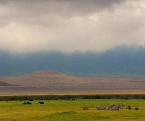 Puzle Norongoro - Tanzânia -