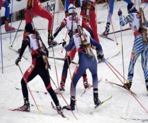 Puzle O biatlo em um esporte de inverno da combinação de cross-skiing país com tiro ao alvo.