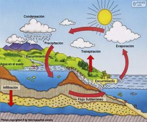 Puzle O ciclo da água (es)