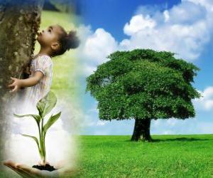 Puzle O Dia da Árvore é comemorado no Brasil o 21 de setembro e em Portugal o 21 de março. Em outros países é celebrar em diferentes datas durante a época de plantio adequada