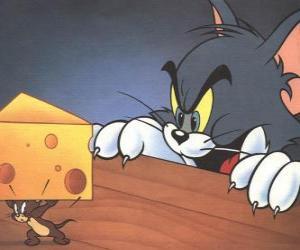 Puzle O gato Tom surpreendente o rato Jerry levando um pedaço de queijo