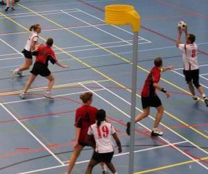 Puzle O korfbal, também chamado balonkorf, é um esporte coletivo disputado entre duas equipas que procuram introduzir uma bola em uma cesta.