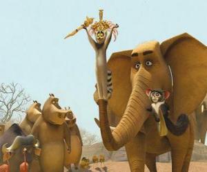 Puzle O Rei Julien, o anel-tailed lemur com outros animais