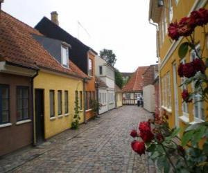 Puzle Odense, Dinamarca