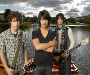 Puzle Os irmãos Grey, Camp Rock