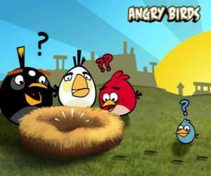 Puzle Os pássaros descobrem que alguém roubou os ovos do ninho