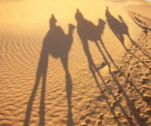 Puzle Os três Reis Magos montados em camelos no seu caminho a Belém