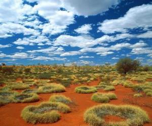 Puzle Outback australiano