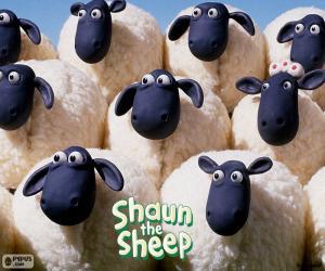 Puzle Ovelha do rebanho de Shaun