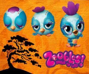Puzle Pássarinho Zooble de Petagonia