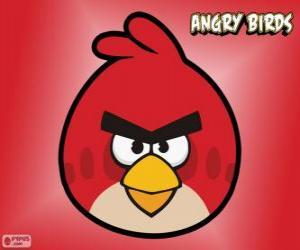Puzle Pássaro Vermelho (Red Bird)