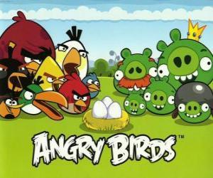 Puzle Pássaros, ovos e porcos verdes em Angry Birds
