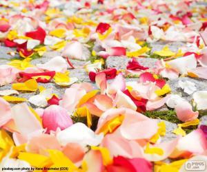 Puzle Pétalas de rosa, casamento