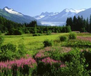 Puzle Paisagem Alaska no verão