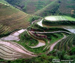 Puzle Paisagem da China rural