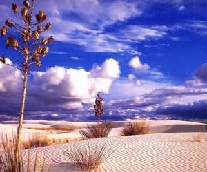 Puzle Paisagem de deserto