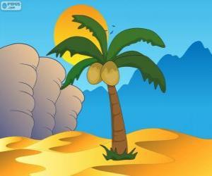 Puzle Palmeira, árvore no oásis do deserto