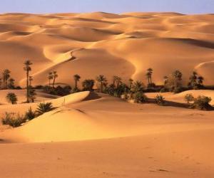 Puzle Palmeiras nas dunas do deserto
