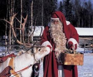 Puzle Papai Noel dando alimentar as renas