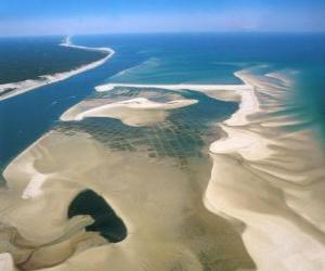 Puzle Parque Nacional do Banco de Arguim, localizada ao longo da costa atlântica. Mauritânia.