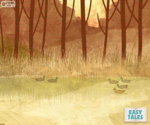 Puzle Patinho feio, nadar na lagoa com seus irmãos
