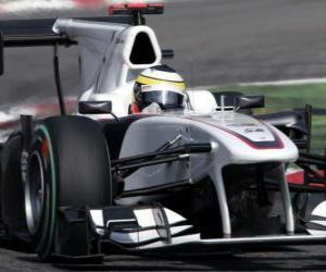 Puzle Pedro de la Rosa - Sauber - Monza 2010