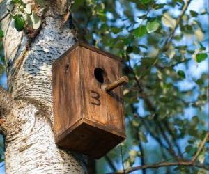 Puzle Pequena casa de madeira para pássaros na primavera