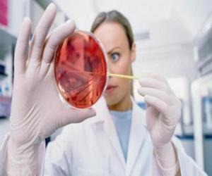 Puzle Pharmaceutical Research