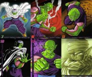 Puzle Piccolo Piccolo monstro filho Daimao, nasceu para se vingar de Goku. Ela vem do planeta Namek. É o primeiro mestre de Son Gohan.