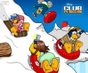 Puzle Pinguins descendo em trenó