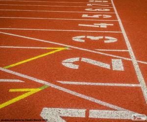 Puzle Pista Atletismo 100m
