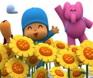 Puzle Pocoyo e seus amigos em um campo de girassóis