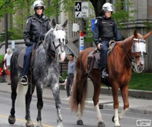 Puzle Policiais a cavalo