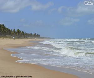 Puzle Praia de Imbassai, Brasil